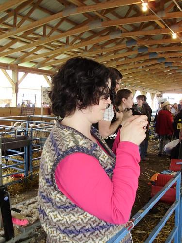 Sheep stalker