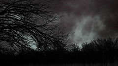 (BarelySpoken) Tags: tornadoe