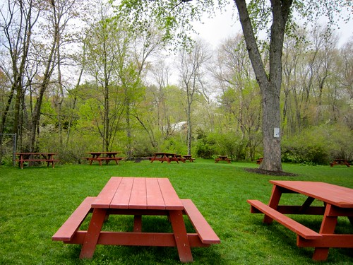 Picnic Table Grove