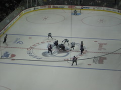 IMG_0226 (glittergirrll) Tags: hockey coloradoavalanche