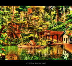 * A Garden Dream * (*atrium09) Tags: travel trees reflection portugal water garden agua bravo arboles jardin olympus palace botanico reflejo tropical botanic monte madeira isla hdr funchal photomatix magicdonkey flickrsbest atrium09 mywinners abigfave platinumphoto aplusphoto superbmasterpiece goldenphotographer rubenseabra 75faves
