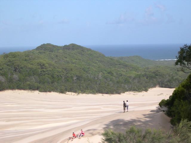 Fraser Island March 2008 - 03.jpg