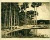 1918 Unknown (A.S.) [woodland clearing and pond] (blacque_jacques) Tags: etching eauforte aquafortis