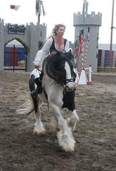 ND60 116 (A J Stevens) Tags: horses beautiful faire gypsy renaissance jud ajs happycamp cobs renaissancepleasurefaire gypsycobs shutterstud judsphotos