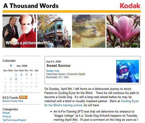 100wordsblog