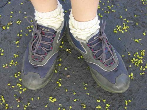 Ruffles & Bubbles socks