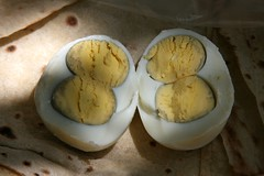 Twin Egg (Dr. Hendi) Tags: mountain color day iran egg twin     anoosh kohgiluyeh     boyerahmad doctorhendii dehdasht     sherogeru