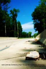The Book3 (KarenWLong) Tags: road trees summer sky abandoned book quote roadside tomsawyer huckleberryfinn