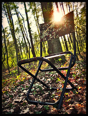 sit down (MISTER YELLOW) Tags: wood sun forest germany deutschland chair laub sonne wald stuhl 2011 misteryellow