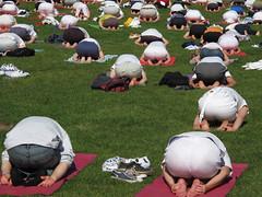 Yoga Day-7