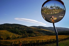Nuvola lenticolare nel profondo Chianti (FaP ;-)) Tags: autumn vacation italy holiday selfportrait fall leaves foglie landscape florence reflex vineyard europe colours wine olive io tuscany oil chianti firenze autoritratto toscana autunno colori riflessi olivegrove paesaggio vacanze vino italians olio riflesso olivo wiew vigna fap amazingtalent i chiantishire thatsclassy reflexses farolfi