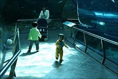 2007國旅卡DAY5(屏東海生館)044