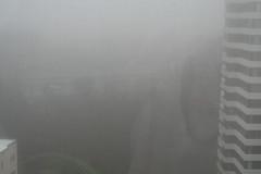 Fog 122307