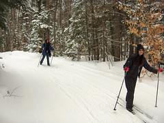 ski_trail
