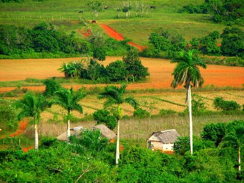 Near Trinidad, Cuba por headlessmonk.