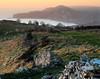 Worbarrow Tout (lowbattery) Tags: trees sky cliff water up grass wall canon landscape coast haze warm sheep south peach sigma hills dorset gad tout tyneham 81a 1770mm worbarrow nd4grad
