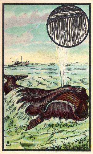 baliene