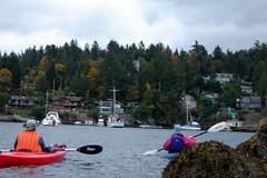 DSC01058 (spuzzum42) Tags: kayak victoria kayaking brentwoodbay todinlet