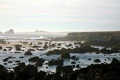 IMG_6159 (Sam's Exotic Travels) Tags: ocean california ca lighthouse rock coast sam pacific rocky centralcoast sams pigeonpoint elephantseals piedrasblancas exotictravelphotos exoticphoto