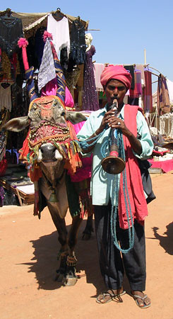 Red Swami and Cow