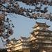 姫路城:姫路城