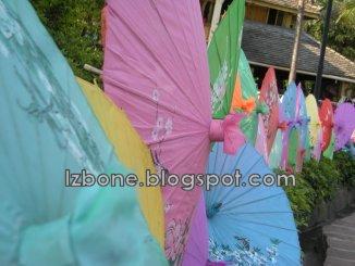 daizu umbrellas