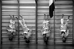 I quattro sì al referendum (ba.dev) Tags: judo children bambini palestra atestaingiù capovolti spalliere