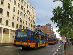 Electric trolley buses such as this one (downtown) have been a common sight on Beacon Avenue for decades. Photo by Oran Viriyincy.