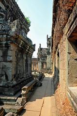 Cambodia-2791 - No not Angkor Wat