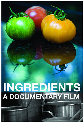 Ingredients (USA 2009) movie poster