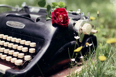 Waiting For You ({peace&love}) Tags: old red flower green grass typewriter rose yellow vintage focus bokeh dandelions pinkparis1233