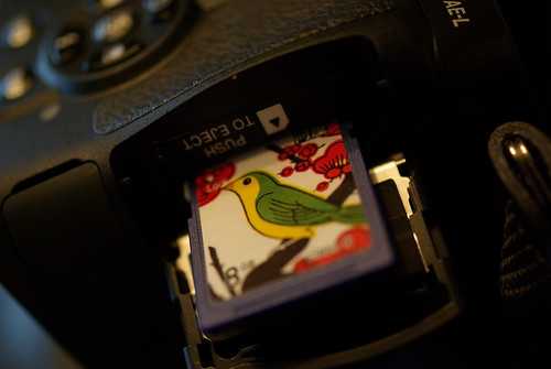 PENTAX K-7 SD card (by HAMACHI!)