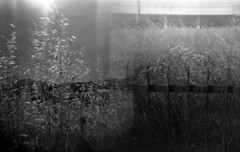 lomo holga 120 : freedom and imprisonment (cHr1st1an S images) Tags: sardegna bw italy white black 120 6x6 film analog freedom blackwhite holga lomo lomography flickr sardinia bn analogue conceptual bianco holga120 nero biancoenero imprisonment olbia analogic concettuale liberta overlapped overlapping analogico conceptualphotography film120 blackwhitephotos lomoholga lomographies flickraward film6x6 fotografiaconcettuale lomoholga120 chr1st1ans pirigionia christiansorrentino