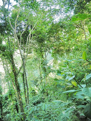 Slopping ravine