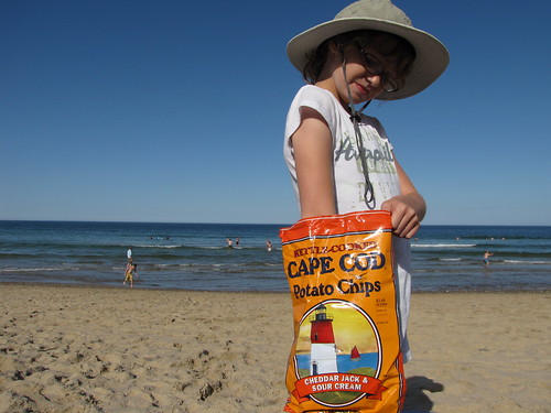 Cape Cod chips in Cape Cod