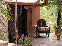 Fiaca perruna - Hostel Malka