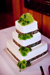 The Cake (Bill Dempsey) Tags: wedding wv elkins 5dmkii