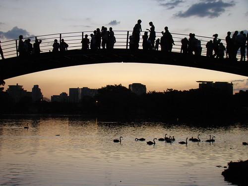 Ibirapuera Sunset