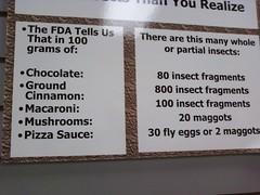 0805091519a (aortali1375) Tags: bugmuseum