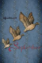 September iPhone wallpaper - 320x480px