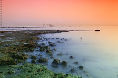 Ramadan Sunrise (A.alFoudry) Tags: morning blue sea summer cliff reflection green bird beach water birds rock sunrise canon eos dawn sand rocks iron gulf crystal mark smoke tide low full filter shore lee frame 5d lowtide kuwait arabian fullframe ramadan ef kuwaiti arabiangulf q8 abdullah  mark2 1635mm   || f28l   kuw q80 q8city  xnuzha alfoudry  canonef1635mmf28l abdullahalfoudry  foudryphotocom canonef1635mmf28lusmii anjefa mark|| 5d|| canoneos5d|| mk|| canoneos5dmark|| canonef1635mmf28l||