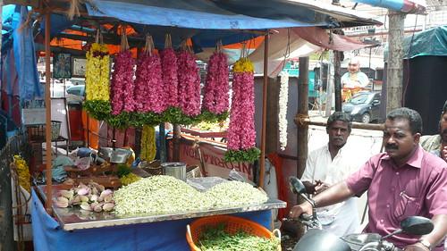 Kerala 063