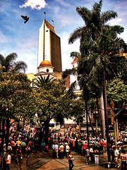 ¡Que Berrio-ndera! (Schubs) Tags: park parque sky building clouds palms colombia platz edificio himmel wolke paloma cielo nubes taube kolumbien medellin hdr pidgeon hochhaus medellín antioquia palmas colombie berrio paisas coltejer chimbitas