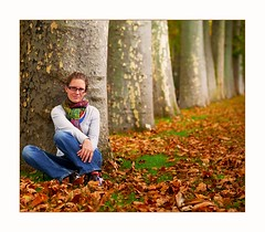 szi stny (Botond Horvth) Tags: autumn color tree nature forest landscape 50mm photo spain nikon october europe nikkor 2009 fa vitoria espritu d90 sz oktber botond levl horvth spanyolorszg lny fruzsi vszak baszkfld