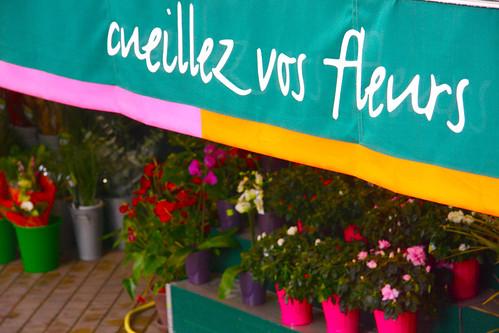 Flower shop from bus window