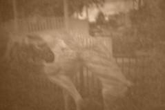 CSC_0077 (John Aho) Tags: camera box cigar cameraobscura ocalafl nikond90