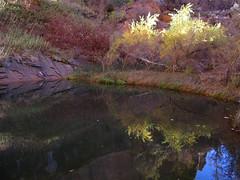 IMG_0637 (kalen_jones) Tags: reflection moab archesnationalpark sleepyhollow