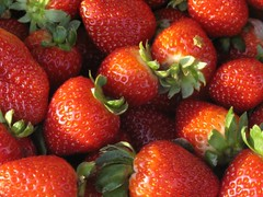 1262326_red_strawberries