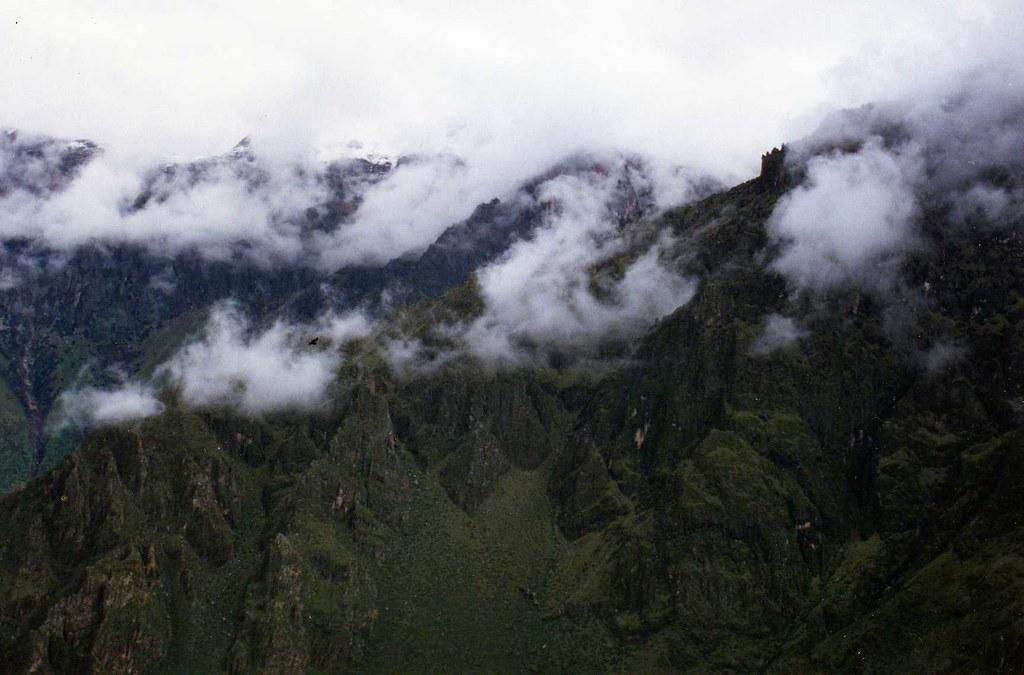 Colca Canyon - condor!