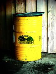 Farm Fresh...from a can?! (Jenn (ovaunda)) Tags: green yellow sony dsch5 thechallengefactory jennovaunda ovaunda